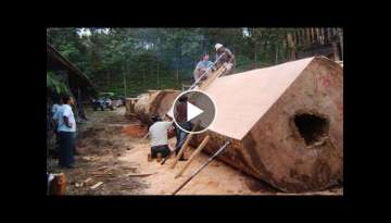 Dangerous Largest Sawmill Woodworking Fastest Easily - Magic CNC Technology